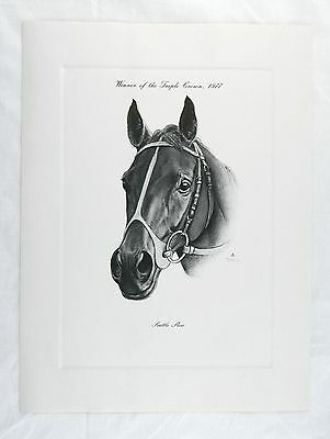 Vintage 1977 Seattle Slew Triple Crown Kentucky Derby Winner Talio Chrome Print