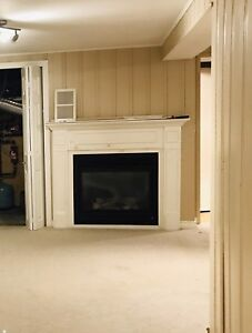 Beautiful Direct vent natural gas fireplace with mantel