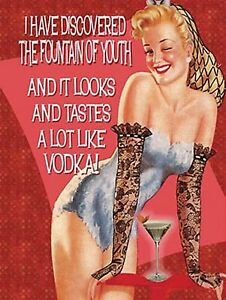 FUNNY-METAL-SIGN-VINTAGE-RETRO-STYLE-WALL-PLAQUE-FUNNY-VODKA-JOKE-HOUSE-PICTURE