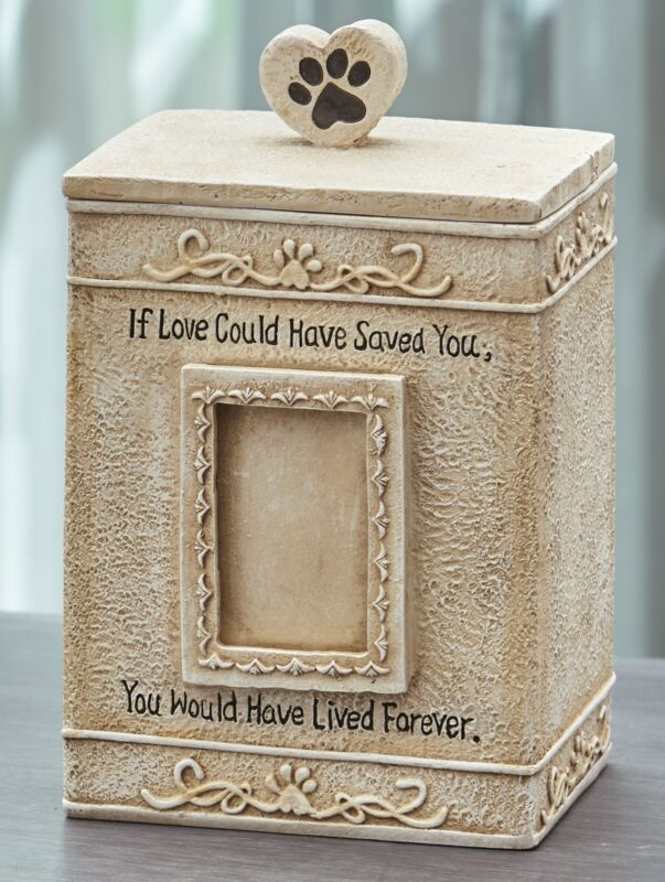 Faithful Angel Pet Memorial Urn with Photo Slot and Paw Print