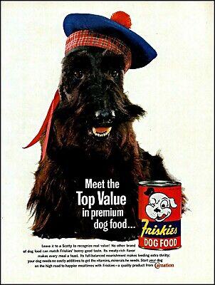 1961 Scottish terrier in hat Friskies dog food vintage photo print ad adl80