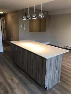 Leasing Top Floor 1 Bedrooms or 1 + Den for January and February