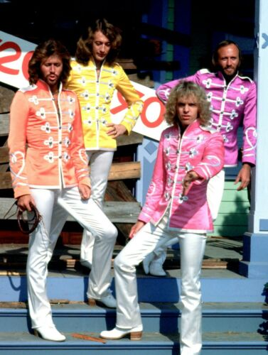 THE BEE GEES - MUSIC PHOTO #99
