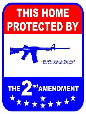 This Home Protected By 2nd Amendment Security Retro Vintage Metal Sign 9x12 2 Retro Signs