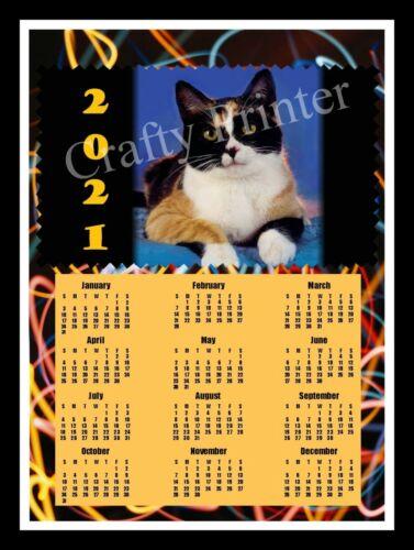 2021 CAT CALENDAR MAGNET - CALICO CAT