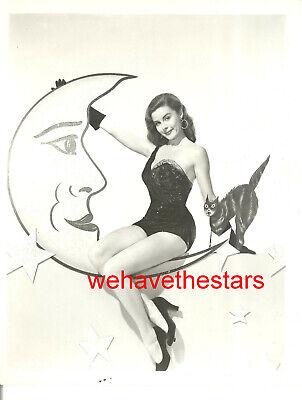 Vintage Elaine Stewart HALLOWEEN PINUP 50s MGM Publicity Portrait](Vintage Halloween Portraits)
