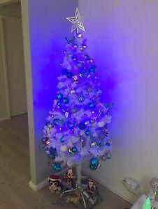 Christmas tree Sans Souci Rockdale Area Preview