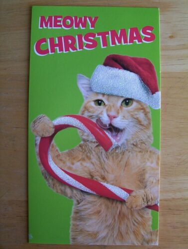 Cute Orange Tabby Cat in Santa Hat Christmas card with White envelope Candy Cane