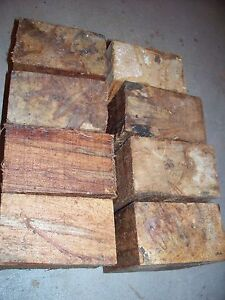 AMBROSIA MAPLE BOWL BLANKS LATHE TURNING BLOCKS WOOD LOT OF 8