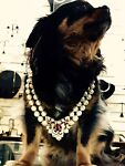 Raul Haas/Hyde Park Jewelers