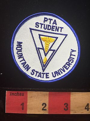 Vtg West Virginia Patch Mountain State University PTA Student  64C
