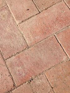 Free pavers Frenchs Forest Warringah Area Preview