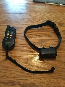 Shock collar for small to medium canine