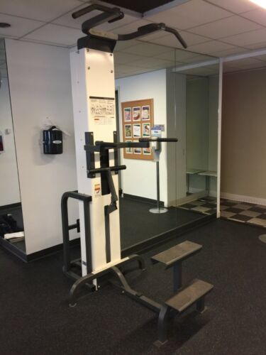 Cybex Modular Assisted Chin Dip - Cleaned & Serviced