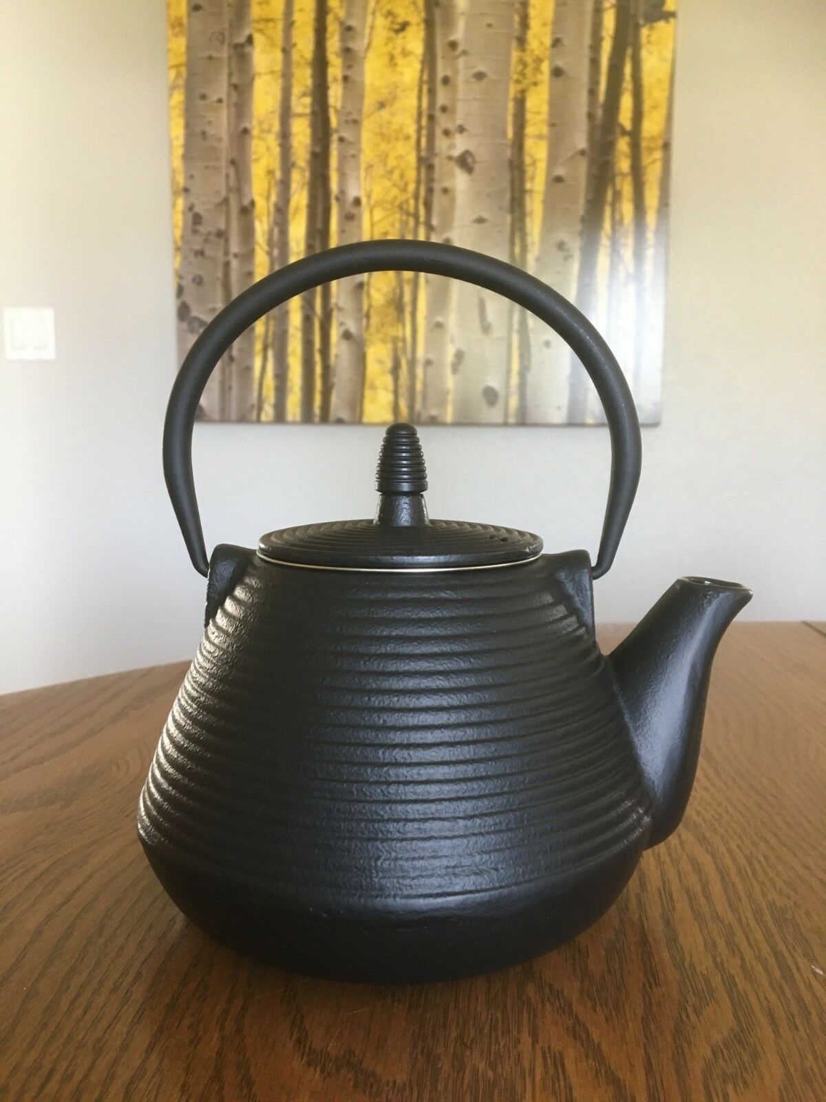 Cast Iron Teapot 33.8 oz 1 liter New!