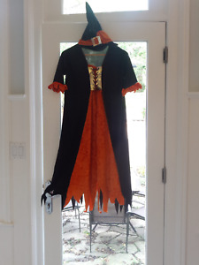 Over 30 Halloween items; costumes, wigs, decorations