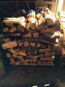 Black cherry wood. Smoking, BBQ, Cooking