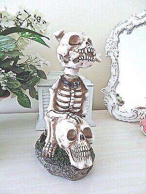 Large DOG SKELETON SITTING ON SKULL FIGURINE Spooky Halloween Prop NEW Resin
