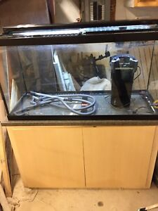 90 Gallon fish tank setup