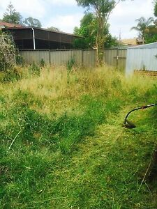 Cheap Lawn Mowing &Gardening &Landscaping(Gutter Cleaning) Blacktown Blacktown Area Preview