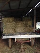 Lucerne hay Helidon Lockyer Valley Preview