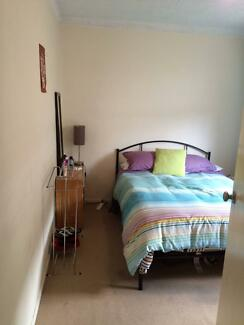 Room for rent near Manly