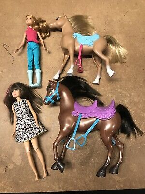 Barbie & Her Sisters In A Pony Tale – Horse Adventure Rare Set! Skipper & Stacie