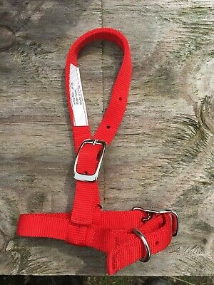 Bmb Red 34 Nylon Sheep Goat Halter