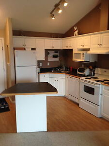 Cozy Furnished 2 Bedroom Condo Near 91 Street and Ellerslie Road