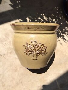 Glazed Raised Olive Tree Motif Planter Pot