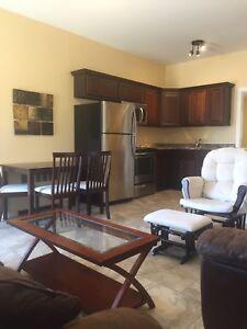 One bdrm furnished ground floor Apt