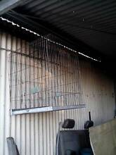 Various Bird Cages / Items for sale Amiens Southern Downs Preview