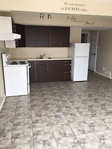 One bedroom suite in Brintnell area