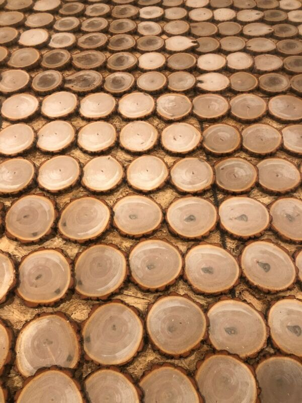 """20 ct. 3-1/2""""-3"""" Hickory Wood Cookie Slices Rounds Live Edge wedding ornament"""