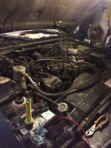 Looking for a 4.3 engine