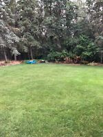 $15/h need help today! Need some help with the yard