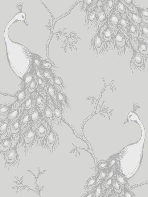 New Fine Decor Empress Peacock Shabby Chic Wallpaper White / Grey/Silver FD40712