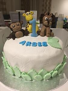 Birthday & Smash Cakes Brisbane Region Preview