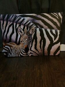 Zebra Canvases