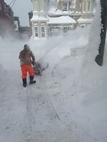 Offer snow blowing and shovelling