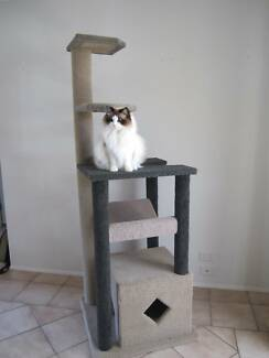 Massive Cat Tree, Cat Climbing Tower Loganlea Logan Area Preview