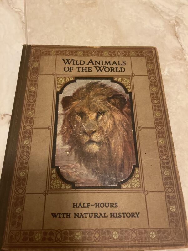 Childrens Book Antique RAPHAEL TUCK POST CARD Views Victorian Animals
