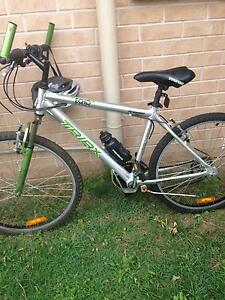 Adult bicycles Forest Lake Brisbane South West Preview