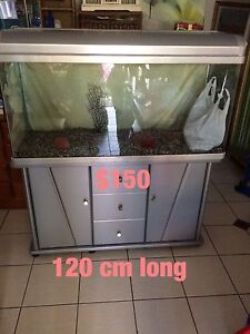 Fish tank $150 not negotiable at all please do not ask Cabramatta West Fairfield Area Preview