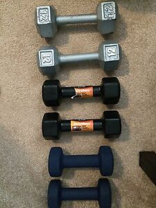 Weights for sale  Stratford Kitchener Area image 1