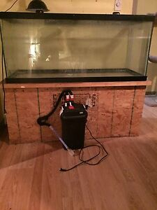 $450.00; O.B.O - 75 GALLON FISH (OR TURTLE) TANK  PERFECT SETUP!