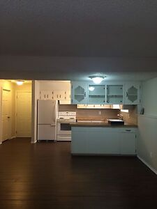2Bed room apartment lakeview