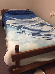Single bed with mattress Airds Campbelltown Area Preview
