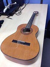 3/4 Alvarez Classical Nylon Guitar Randwick Eastern Suburbs Preview
