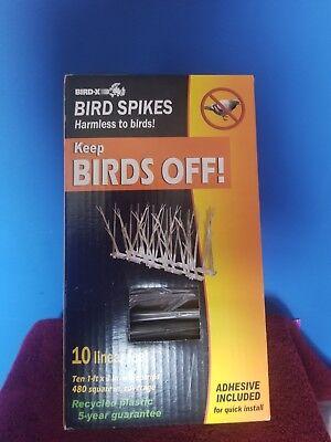 Bird-X  10 ft. Original Plastic Bird Spikes Bird Control Kit  SP-10-NR - Pigeon